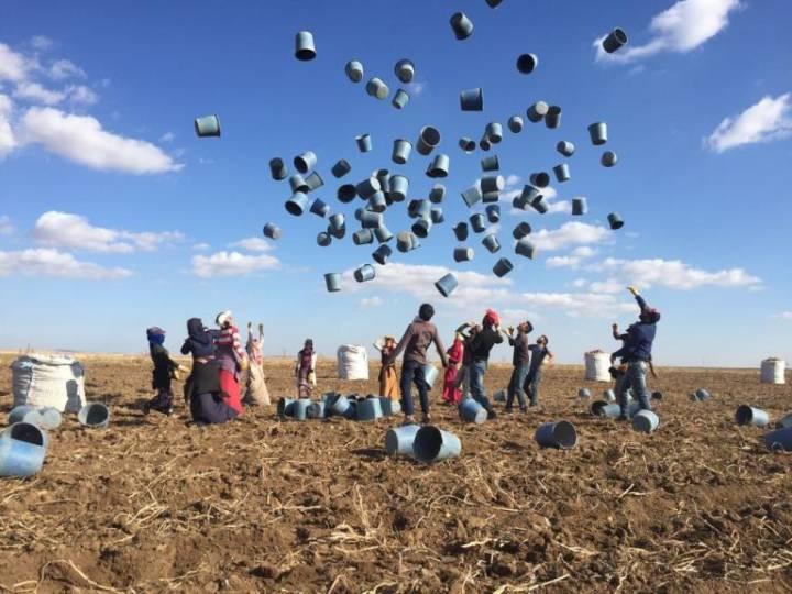 Siverek'ten Konya'ya gelerek patates tarlasında çalışan mevsimlik tarım işçileri mesai bitiminde